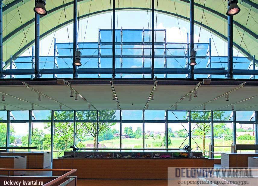 Пространство малого «холма». Здесь в витринах выставлены коллекции ракушек, минералов и гербарии, которые собрал сам Клее