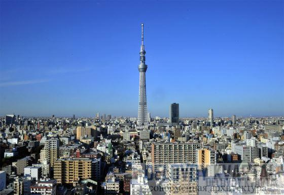 телебашня Токио небесное дерево