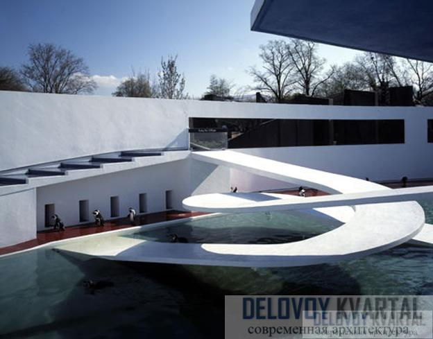 Бассейн для пингвинов в Лондонском зоопарке. Пример модернизма