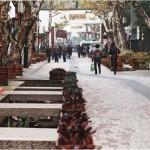 Пешеходная улица Чжуншань