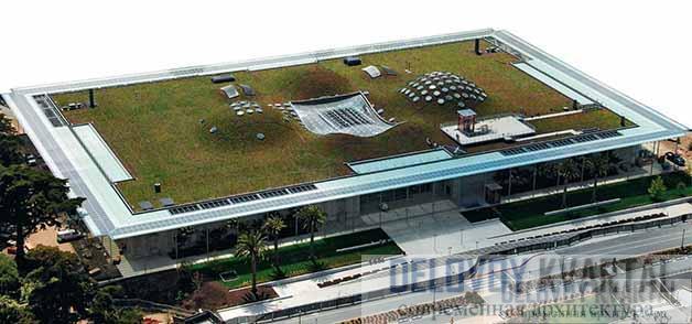 Научно-музейный комплекс Калифорнийской академии наук